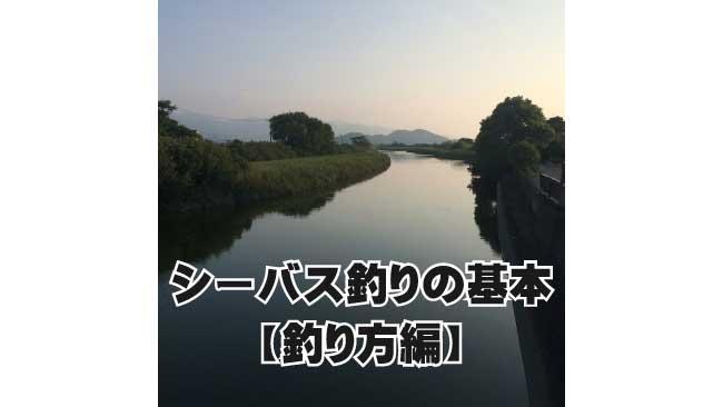 シーバス釣りの基本【釣り方編】