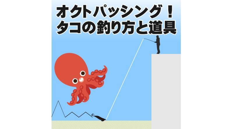 オクトパッシング!タコの釣り方と道具